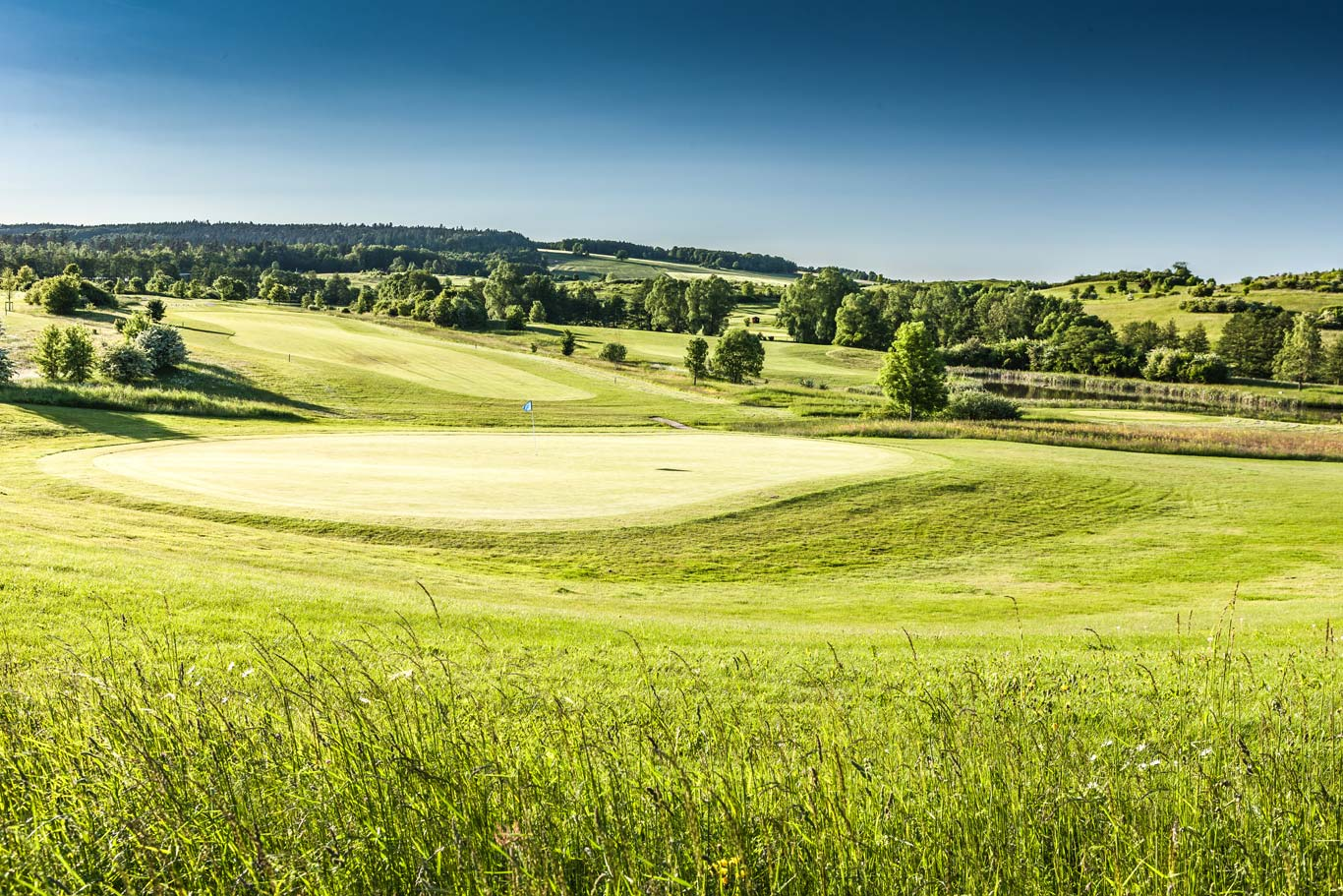 golfclub-praforst-gruen-05