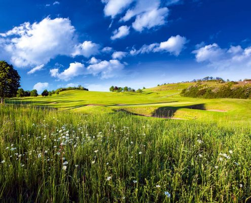golfclub-praforst-gruen-11